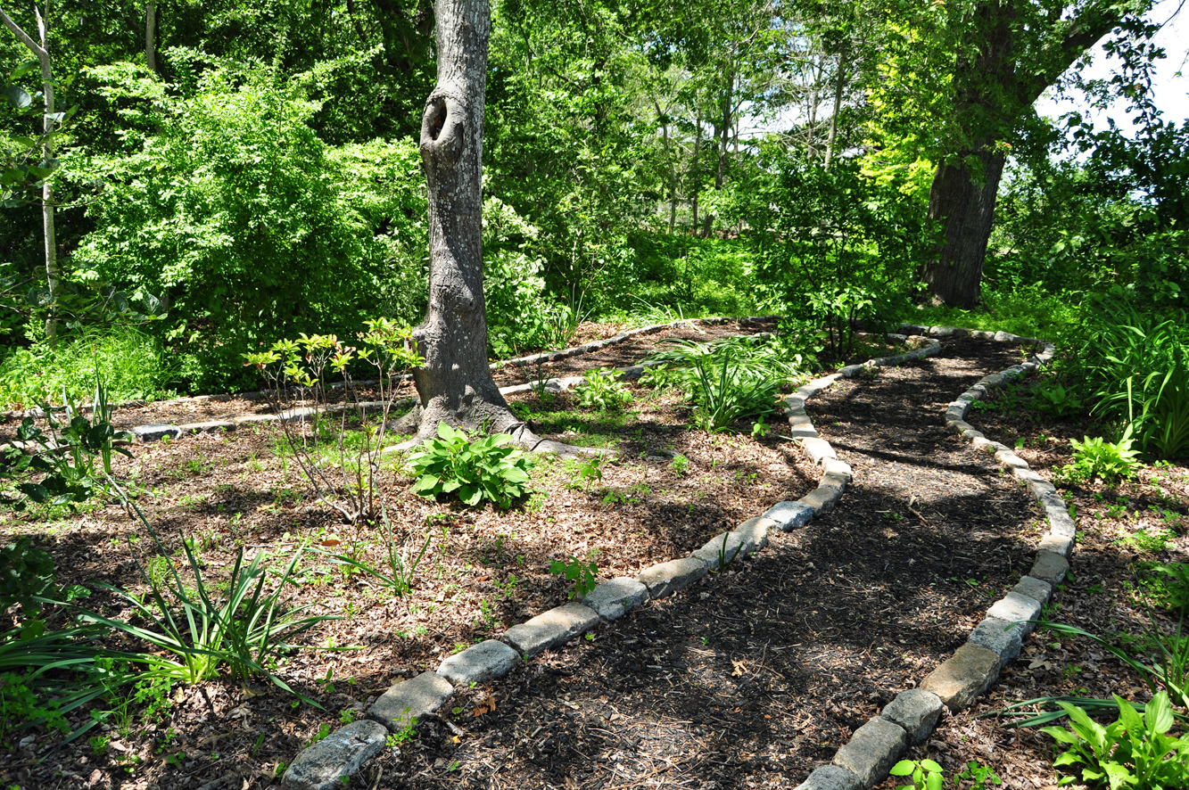path in wetlands buffer garden at Buttonwood Park