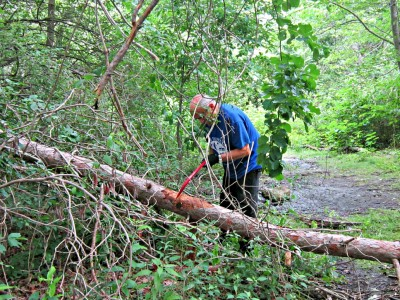 man cutting a fallen branch on a trail