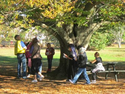 elementary school students visit Buttonwood Park for a Trees in our Park education program