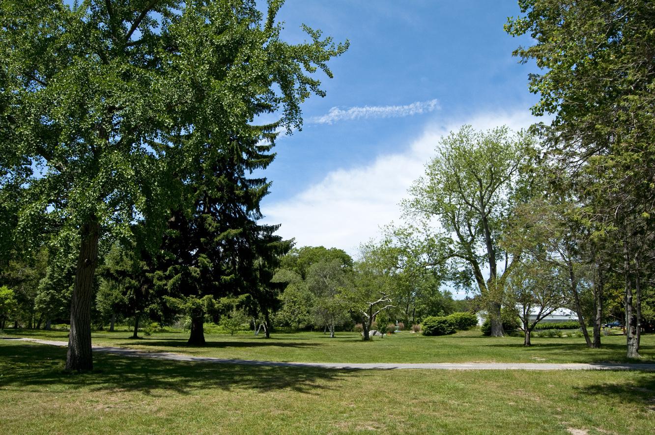 arboretum at Buttonwood Park