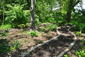 path in wetlands buffer garden at Buttonwood Park