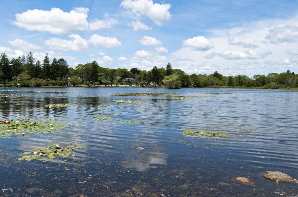 pond at Buttonwood Park in New Bedford