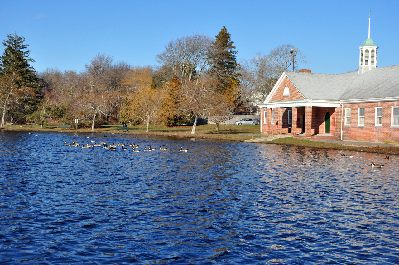 Buttonwood Park Warming House